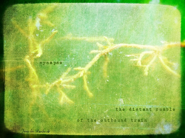 Hambrick - synapse ACCEPTED FOR PUB IN DAILY HAIGA