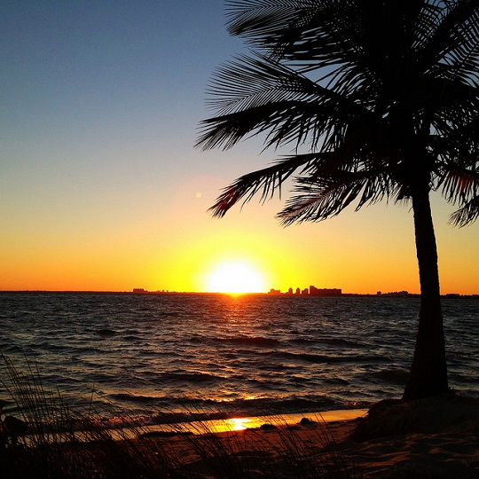 Ines Hegedus-Garcia - another Miami sunset