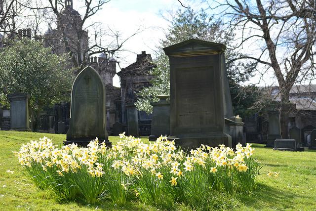 Kin Lane - Cemetery