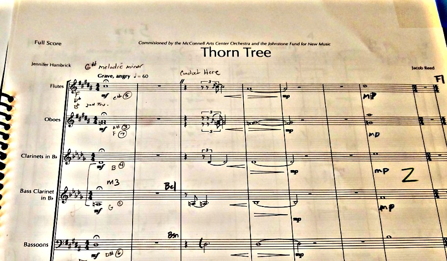 Thorn Tree page 1